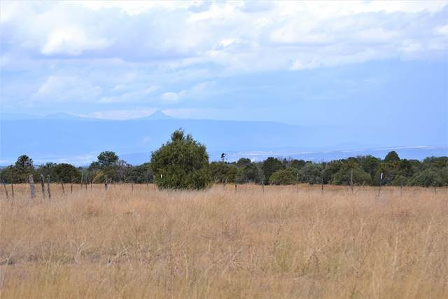 TBD Co Rd 77, Truchas, NM 87578 (MLS #202002870) :: The Very Best of Santa Fe