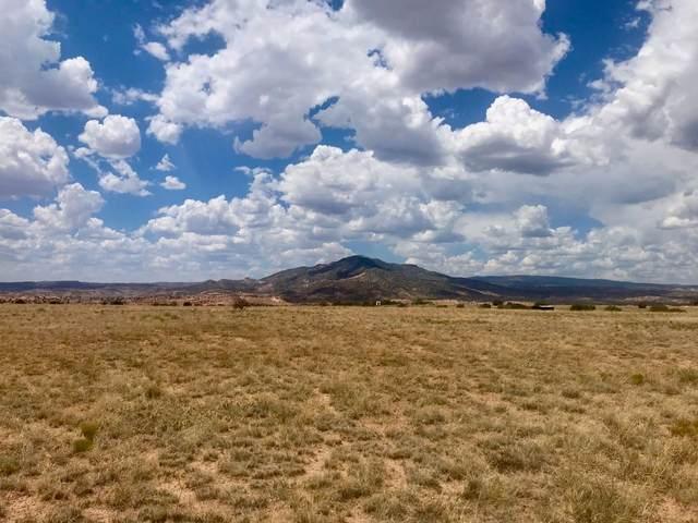 Tract 16-A Corona Drive, Abiquiu, NM 87510 (MLS #202002893) :: The Very Best of Santa Fe