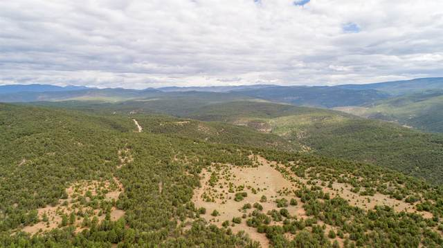 0 Pecos Barillas Road, 83, Pecos, NM 87552 (MLS #202002903) :: The Very Best of Santa Fe