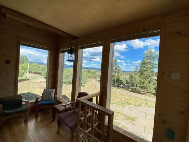 14 Bobcat Ln, Rutheron, NM 87551 (MLS #202002937) :: Berkshire Hathaway HomeServices Santa Fe Real Estate