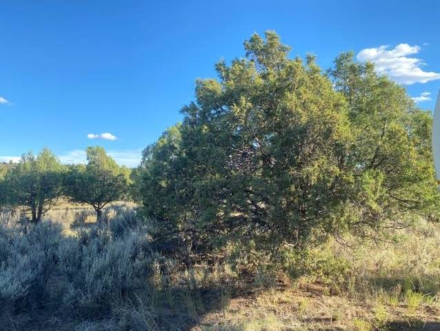 TBD Fort Heron Preserve, Rutheron, NM 87551 (MLS #202002939) :: The Desmond Hamilton Group
