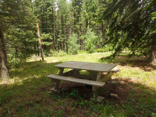 603 Forest Svc 391, Rociada, NM 87742 (MLS #202002951) :: The Desmond Hamilton Group