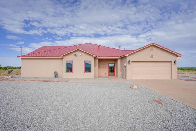 337 Scholle Road, Socorro, NM 87801 (MLS #202002985) :: The Desmond Hamilton Group