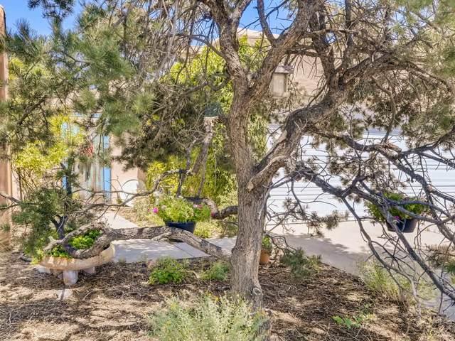 1887 Camino De Pabilo, Santa Fe, NM 87505 (MLS #202003015) :: The Very Best of Santa Fe