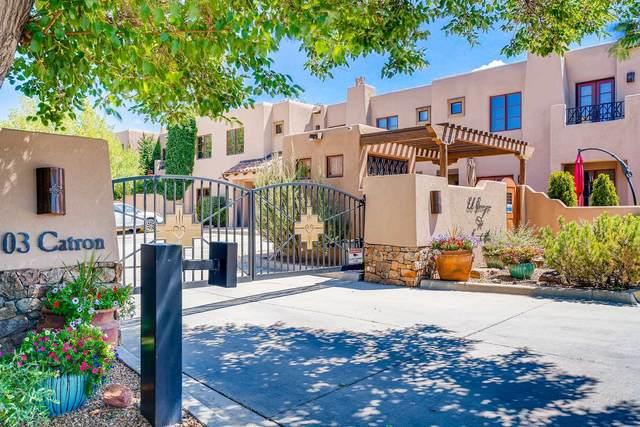 103 Catron St. #57, Santa Fe, NM 87501 (MLS #202003033) :: The Desmond Hamilton Group