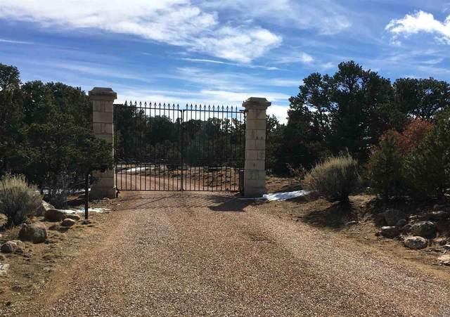 155 Ridge Rd, Santa Fe, NM 87505 (MLS #202003035) :: The Desmond Hamilton Group