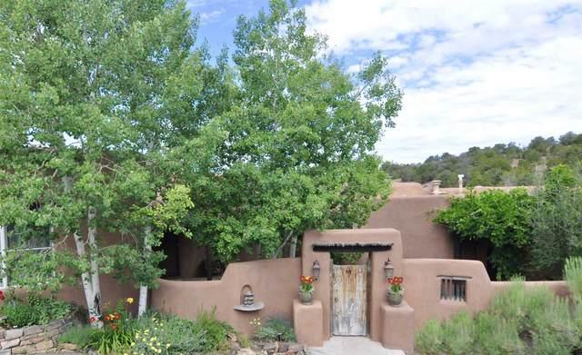 1281 Camino De Cruz Blanca, Santa Fe, NM 87505 (MLS #202003038) :: The Desmond Hamilton Group