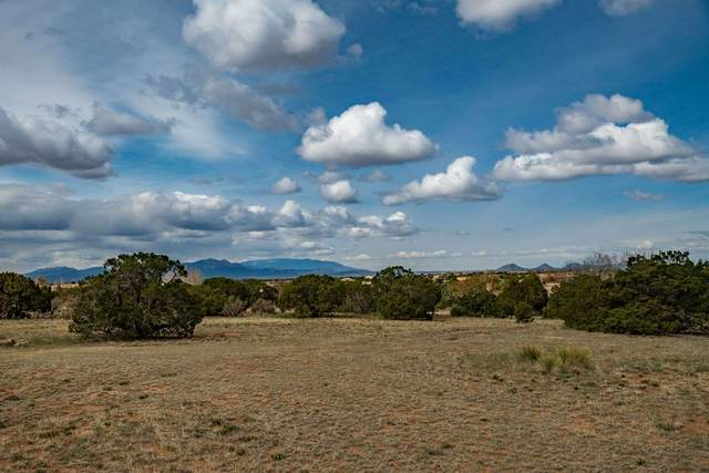 14 Condesa Road, Santa Fe, NM 87508 (MLS #202003053) :: Berkshire Hathaway HomeServices Santa Fe Real Estate
