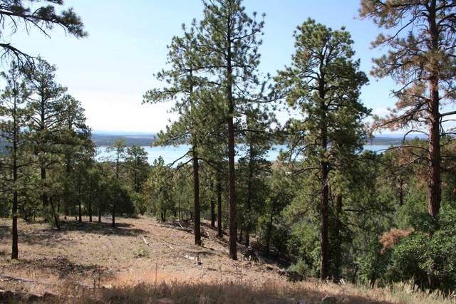TBD Elk Lane, Rutheron, NM 87551 (MLS #202003054) :: Berkshire Hathaway HomeServices Santa Fe Real Estate