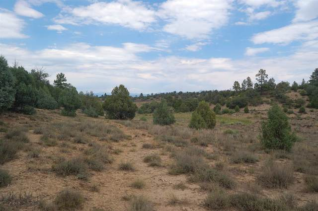 00 Off Hwy 95, Rutheron, NM 87551 (MLS #202003120) :: The Desmond Hamilton Group