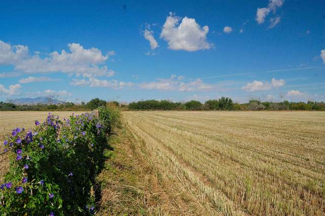 Zia 22 Farm, Las Nutrias, NM 87062 (MLS #202003136) :: The Very Best of Santa Fe