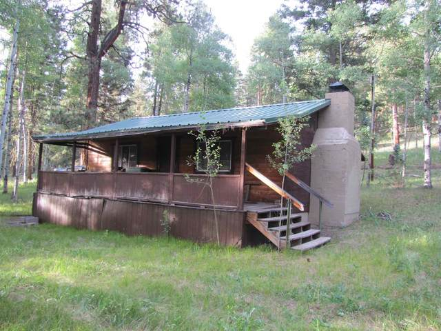 31 Grass Mountain Rd (Cabin H), Pecos, NM 87552 (MLS #202003155) :: Summit Group Real Estate Professionals