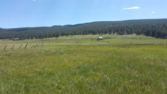 911 State Road 121, Chacon, NM 87713 (MLS #202003181) :: The Very Best of Santa Fe