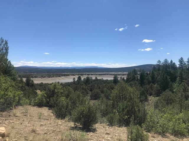 D-1 16 CR 322, Tierra Amarilla, NM 87575 (MLS #202003219) :: The Very Best of Santa Fe