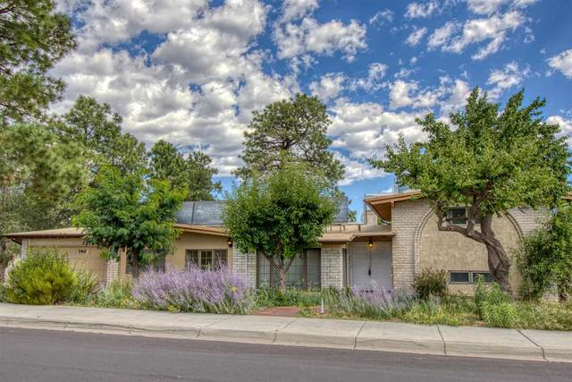 740 Canyon Road, Los Alamos, NM 87544 (MLS #202003237) :: The Desmond Hamilton Group