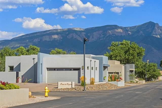 916 Paseo Los Coyotes, Bernalillo, NM 87004 (MLS #202003248) :: Summit Group Real Estate Professionals