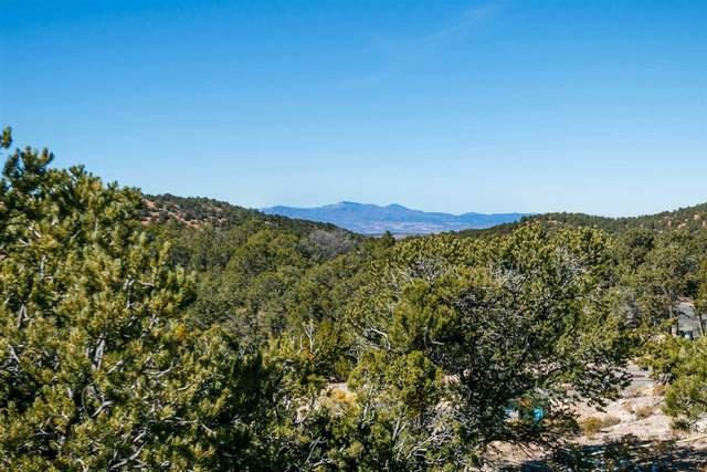 1105 S Summit Ridge, Santa Fe, NM 87501 (MLS #202003297) :: The Very Best of Santa Fe
