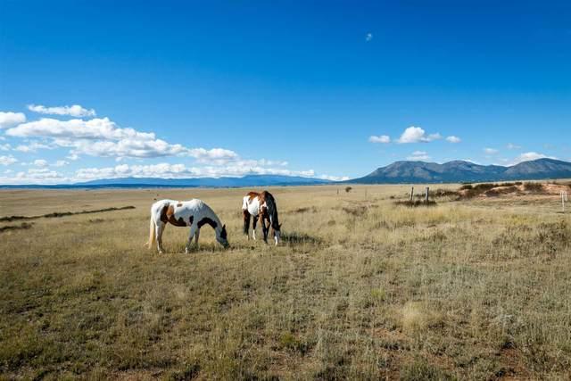 29 Cross Ranch Rd - Farm & Ranch, Stanley, NM 87056 (MLS #202003317) :: Berkshire Hathaway HomeServices Santa Fe Real Estate