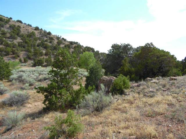 108 Nine Mile Road, Santa Fe, NM 87508 (MLS #202003345) :: The Very Best of Santa Fe