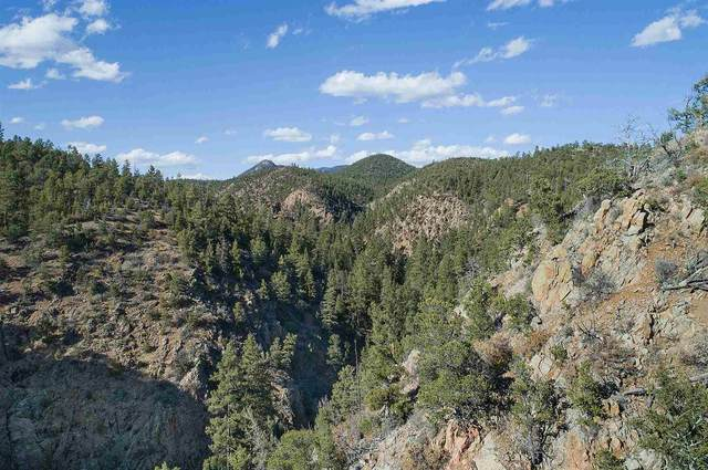 38 Johnsons Ranch Rd 1240 Ac, Santa Fe, NM 87505 (MLS #202003368) :: The Very Best of Santa Fe