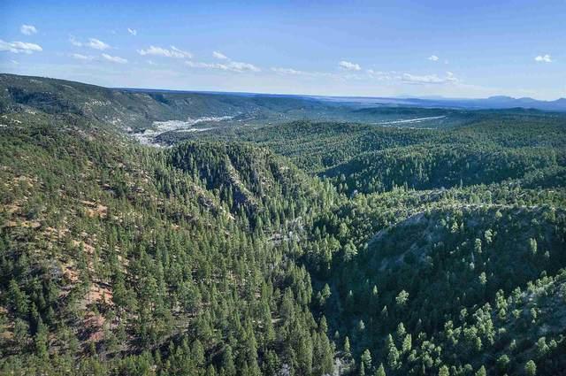 38 Johnsons Ranch Rd 980 Ac, Santa Fe, NM 87505 (MLS #202003369) :: The Very Best of Santa Fe