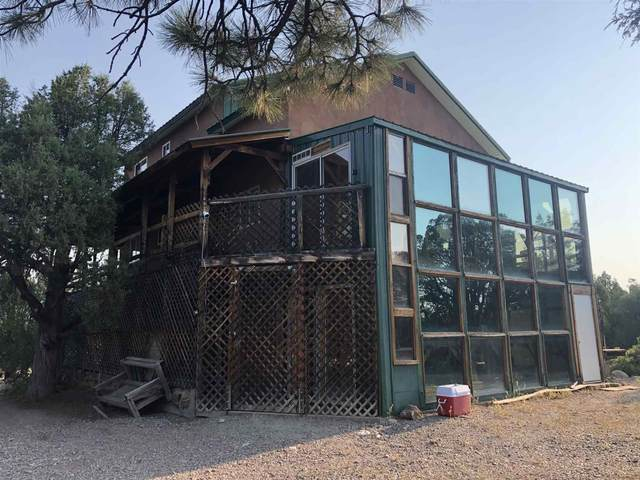 497 State Road 95, Chama, NM 87520 (MLS #202003406) :: Stephanie Hamilton Real Estate