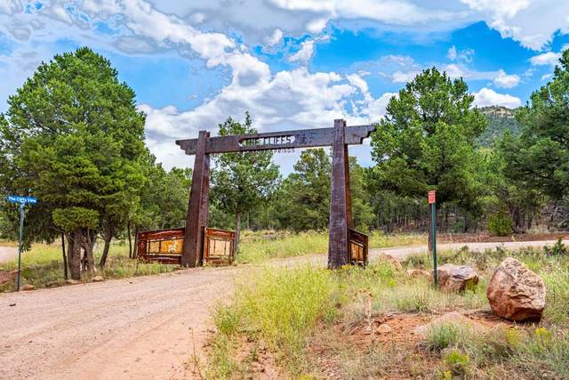 71 The Cliffs View, Glorieta, NM 87535 (MLS #202003440) :: Summit Group Real Estate Professionals