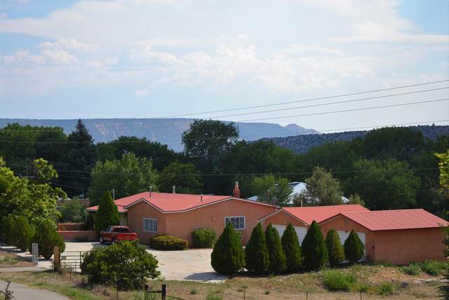 34925 Hwy 285, Ojo Caliente, NM 87549 (MLS #202003444) :: Summit Group Real Estate Professionals