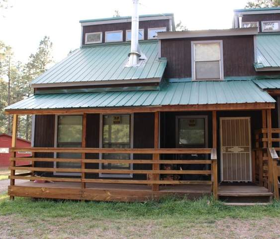 1A Pd 1759 Mountain Brook , Chama, NM 87520 (MLS #202003455) :: The Very Best of Santa Fe