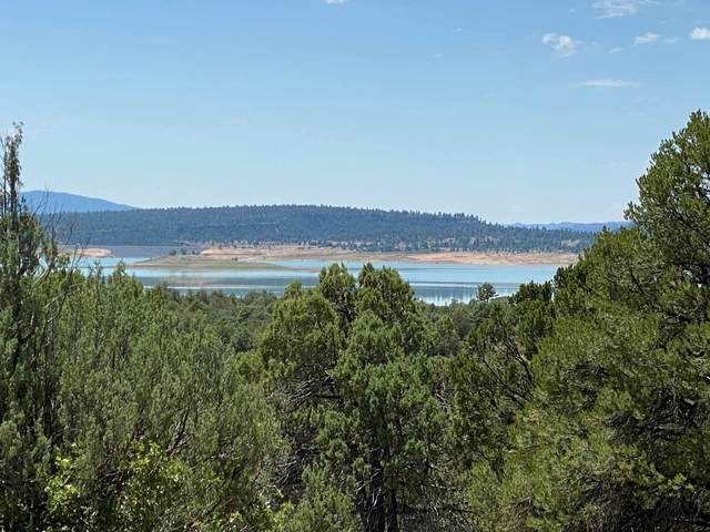 0 Tract A-1, Laguna Vista, Los Ojos, NM 87551 (MLS #202003467) :: The Very Best of Santa Fe