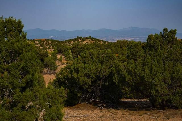 10 Tierra De Tano, Santa Fe, NM 87506 (MLS #202003474) :: Berkshire Hathaway HomeServices Santa Fe Real Estate