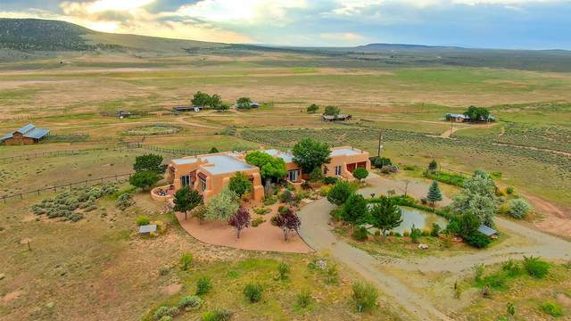 23833 Double D Ranch,   Taos, Taos, NM 87571 (MLS #202003519) :: The Very Best of Santa Fe