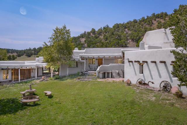 38 Bar Ranch, Quemado, NM 87829 (MLS #202003527) :: Summit Group Real Estate Professionals