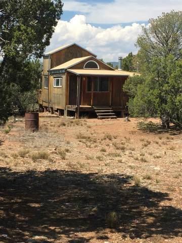00 Overlooking The Pecos River, Ilfeld, NM 87538 (MLS #202003567) :: The Very Best of Santa Fe