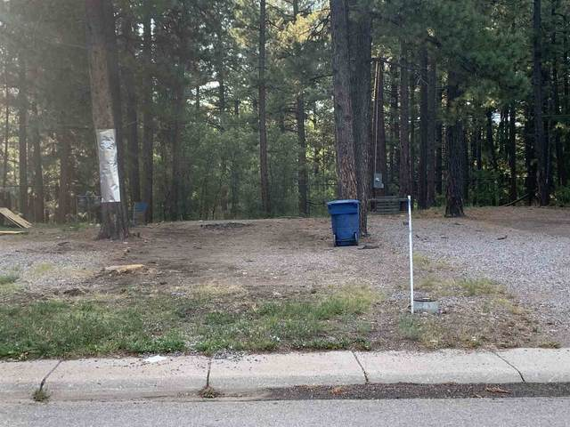 Lot 61 Parcel A, Pinon Drive, Chama, NM 87520 (MLS #202003570) :: Stephanie Hamilton Real Estate