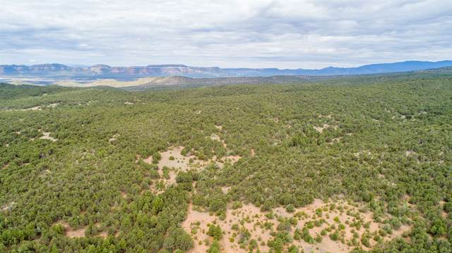 232 County Rd B43b, Ilfeld, NM 87538 (MLS #202003580) :: Summit Group Real Estate Professionals