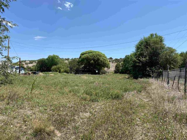 35163 A Highway 285, Ojo Caliente, NM 87549 (MLS #202003605) :: Summit Group Real Estate Professionals