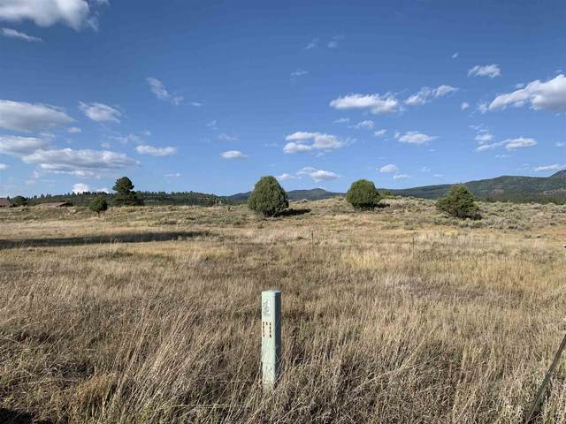 TBD Private Drive 1791, Chama, NM 87520 (MLS #202003654) :: The Very Best of Santa Fe