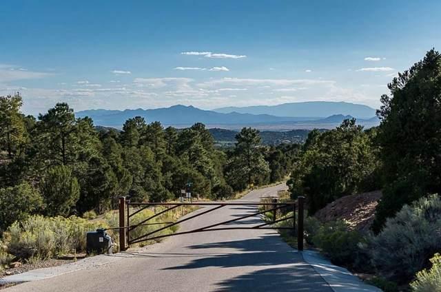 4A Ponderosa Ridge, Lot 2, Santa Fe, NM 87505 (MLS #202003656) :: Stephanie Hamilton Real Estate