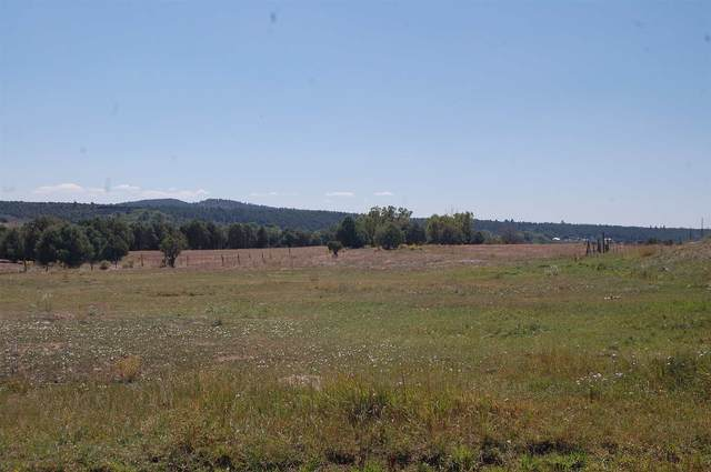 0 County Rd 338, Rutheron, NM 87551 (MLS #202003667) :: The Very Best of Santa Fe