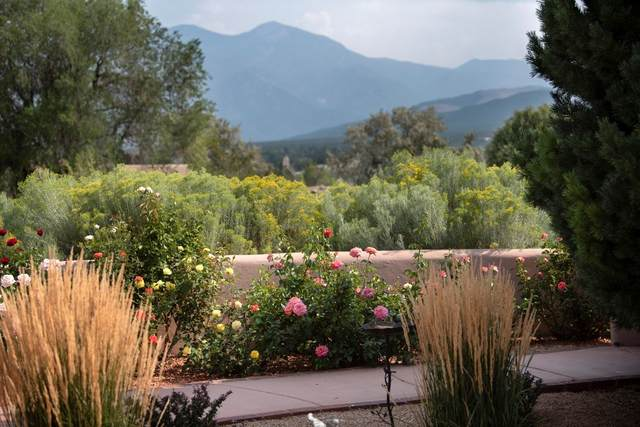 735 Via Manzana, Taos, NM 87571 (MLS #202003692) :: The Very Best of Santa Fe