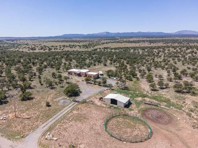 180 Mayeux Road, Corona, NM 88318 (MLS #202003781) :: Neil Lyon Group | Sotheby's International Realty