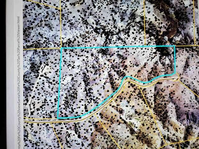 31 Gallina Road, Santa Fe, NM 87508 (MLS #202003817) :: Neil Lyon Group | Sotheby's International Realty