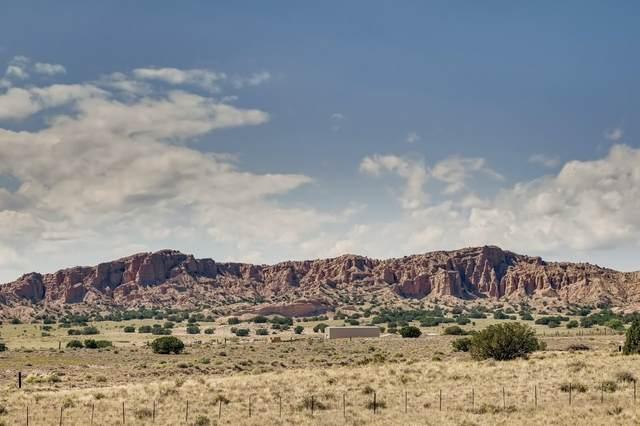 40 Cresencio, Santa Fe, NM 87506 (MLS #202003882) :: Summit Group Real Estate Professionals