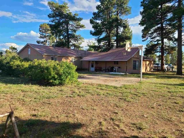 451 Sandoval St., Chama, NM 87520 (MLS #202003897) :: Stephanie Hamilton Real Estate