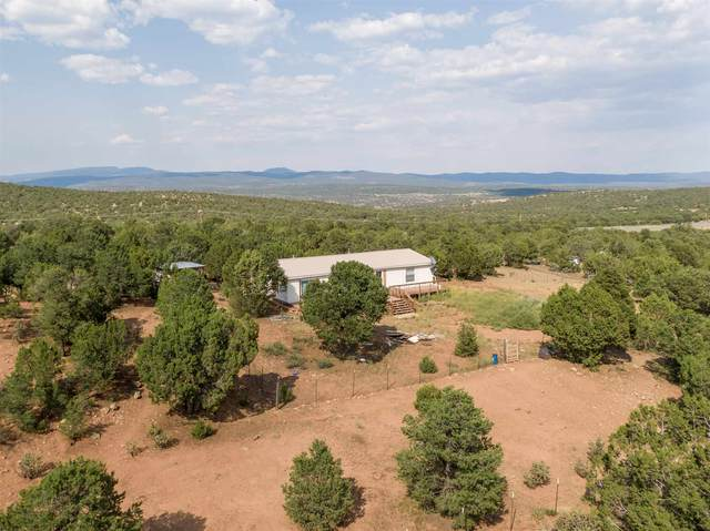 5 Monte Ver Rd, Ilfeld, NM 87538 (MLS #202003929) :: The Very Best of Santa Fe