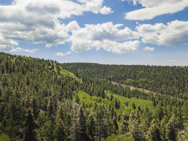 TBD Mountain Meadows Blvd, Angel Fire, NM 87710 (MLS #202003951) :: Berkshire Hathaway HomeServices Santa Fe Real Estate