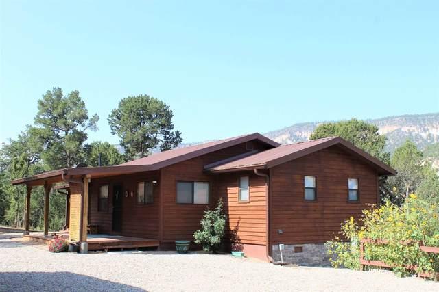 99 Juniper, Jemez Springs, NM 87025 (MLS #202003970) :: The Desmond Hamilton Group