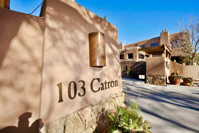 103 Catron, Santa Fe, NM 87501 (MLS #202003994) :: Stephanie Hamilton Real Estate