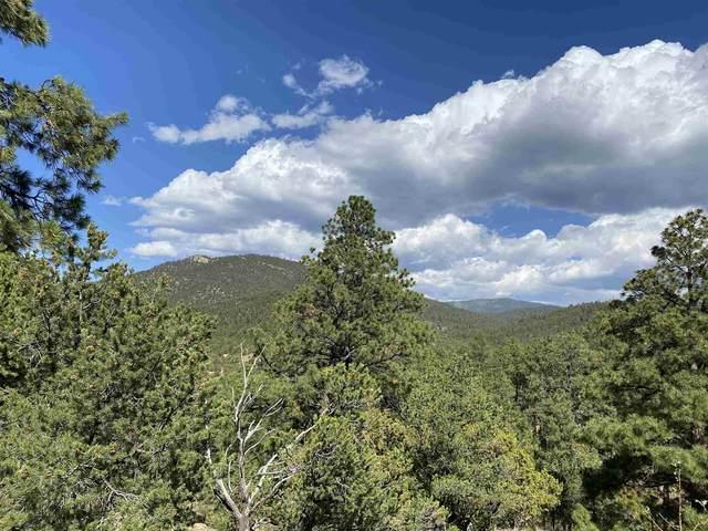 144 La Barbaria Road, Santa Fe, NM 87505 (MLS #202004027) :: Stephanie Hamilton Real Estate